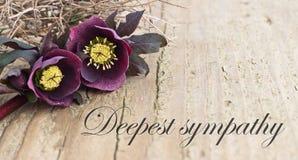 Tarjeta de la condolencia Imágenes de archivo libres de regalías