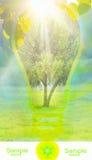 Tarjeta de la ecología Foto de archivo libre de regalías