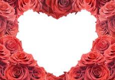Tarjeta de la enhorabuena con las rosas rojas Fotografía de archivo
