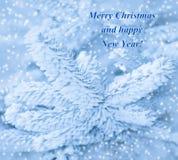 Tarjeta de la Feliz Año Nuevo con el pino y la nieve de la helada. Imagen de archivo
