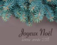 Tarjeta de la Feliz Navidad con el abeto de la rama Fotografía de archivo
