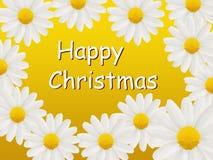 Tarjeta de la feliz Navidad con las margaritas Fotografía de archivo