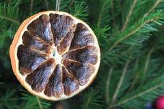 Tarjeta de la Feliz Navidad con la naranja seca Fotos de archivo libres de regalías