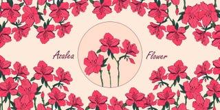 Tarjeta de la flor de la azalea con el lugar para el texto stock de ilustración