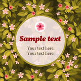 Tarjeta de la flor de la primavera con el marco para el texto Foto de archivo