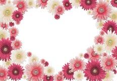 Tarjeta de la flor de la tarjeta del día de San Valentín Imágenes de archivo libres de regalías