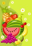 Tarjeta de la fruta ilustración del vector