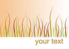 Tarjeta de la hierba del otoño Fotografía de archivo libre de regalías