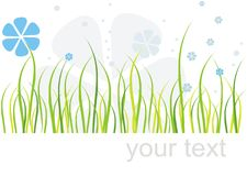 Tarjeta de la hierba y de las flores Foto de archivo libre de regalías
