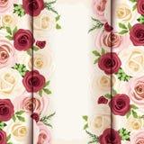 Tarjeta de la invitación con las rosas rojas, rosadas y blancas Vector EPS-10 Imagen de archivo libre de regalías