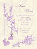 Tarjeta de la invitación de la boda.  Fondo de la lavanda. Imagen de archivo