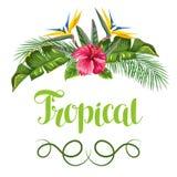 Tarjeta de la invitación con las hojas y las flores tropicales Ramas de las palmas, flor de la ave del paraíso, hibisco Imágenes de archivo libres de regalías