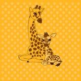 tarjeta de la Madre-jirafa y del lugar de la bebé-jirafa Imágenes de archivo libres de regalías