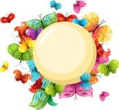 Tarjeta de la mariposa Imagen de archivo libre de regalías