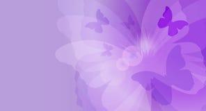 Tarjeta de la mariposa Imágenes de archivo libres de regalías