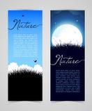 Tarjeta de la naturaleza con la hierba Imagen de archivo libre de regalías