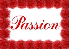 Tarjeta de la pasión con las flores rojas Fotos de archivo