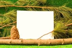 Tarjeta de la plantilla en el fondo de ramas del cedro foto de archivo