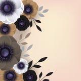 Tarjeta de la plantilla de las flores de las anémonas Imagen de archivo libre de regalías