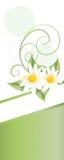 Tarjeta de la primavera Imagen de archivo libre de regalías