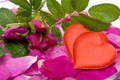 Tarjeta de la tarjeta del día de San Valentín Imagen de archivo libre de regalías
