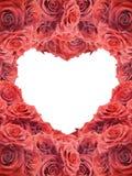 Tarjeta de la tarjeta del día de San Valentín con las rosas rojas Imagenes de archivo