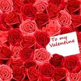 Tarjeta de la tarjeta del día de San Valentín en la cama de rosas Imagen de archivo libre de regalías