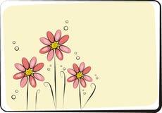 Tarjeta de las flores Imagen de archivo libre de regalías