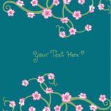 Tarjeta de las flores Fotografía de archivo