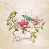 Tarjeta de las flores y de los pájaros Fotos de archivo