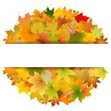 Tarjeta de las hojas de otoño Foto de archivo libre de regalías