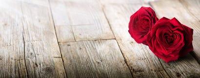 Tarjeta de las tarjetas del día de San Valentín - luz del sol en dos rosas foto de archivo libre de regalías