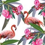 Tarjeta de los pájaros del flamenco y de las flores del trópico Imágenes de archivo libres de regalías