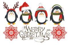 Tarjeta de los pingüinos de la Navidad Foto de archivo libre de regalías