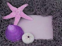 Tarjeta de mensaje teñida púrpura de la playa con los shelles Fotografía de archivo libre de regalías