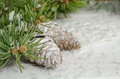 Tarjeta de Navidad con el árbol de abeto de la nieve y los pinecones Foto de archivo