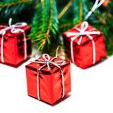 Tarjeta de Navidad con el árbol de abeto y las cajas de regalo rojas aislados en whi Fotos de archivo