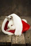 Tarjeta de Navidad con el conejo blanco en fondo de madera Fotografía de archivo libre de regalías