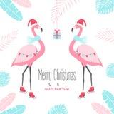 Tarjeta de Navidad con el flamenco Fotografía de archivo libre de regalías