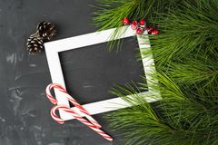 Tarjeta de Navidad con el marco, las piruletas, los pinos y el árbol de abeto blancos Fotografía de archivo libre de regalías