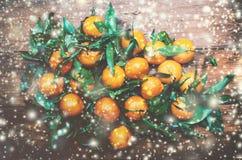 Tarjeta de Navidad con las decoraciones festivas - mandarinas frescas con Fotografía de archivo