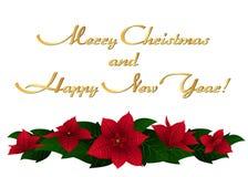 Tarjeta de Navidad con las flores y el saludo de las poinsetias libre illustration