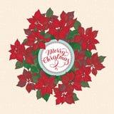 Tarjeta de Navidad con las letras y el modelo de flores de la estrella de la Navidad en fondo de la nieve stock de ilustración