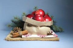 Tarjeta de Navidad con las manzanas rojas Fotografía de archivo libre de regalías