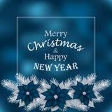 Tarjeta de Navidad con las ramas del abeto y la poinsetia azul Foto de archivo libre de regalías