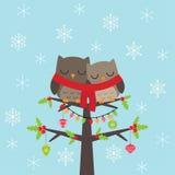 Tarjeta de Navidad con los búhos Fotografía de archivo