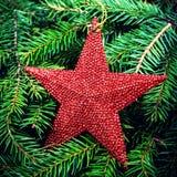 Tarjeta de Navidad con los ornamentos festivos. Rama de árbol de abeto de la Navidad Fotos de archivo libres de regalías