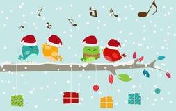 Tarjeta de Navidad con los pájaros y la caja de regalo Imagenes de archivo