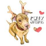 Tarjeta de Navidad con un perro rojo en cuernos de los ciervos El perrito del Año Nuevo felicita Aislado en el fondo blanco ilustración del vector