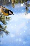 Tarjeta de Navidad del arte con los tits en el árbol de navidad y la nieve Imagenes de archivo